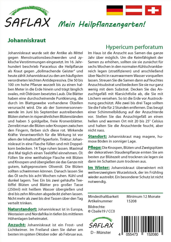 Mein Heilpflanzengarten - Johanniskraut Bild 2