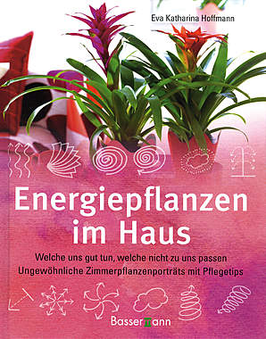 Energiepflanzen im Haus_small