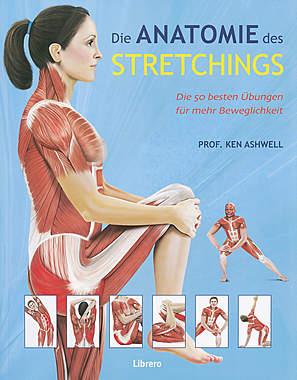 Die Anatomie des Stretchings