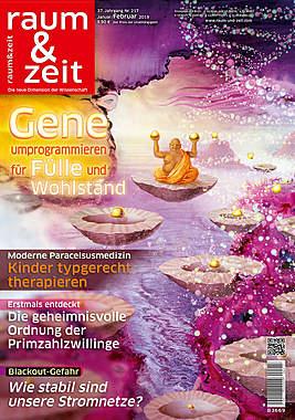 Raum & Zeit Nr. 217 Ausgabe Januar/Februar 2019_small