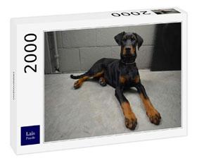 Lais Puzzle Dobermann 2000 Teile - Musterexemplar