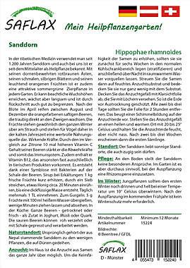 Mein Heilpflanzengarten - Sanddorn_small01