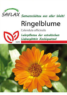 Mein Heilpflanzengarten - Ringelblume