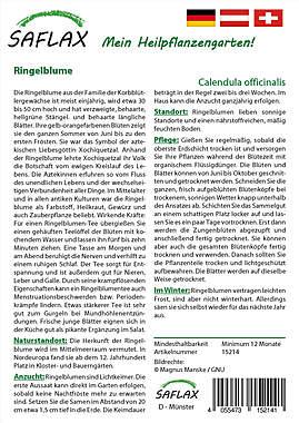 Mein Heilpflanzengarten - Ringelblume_small01