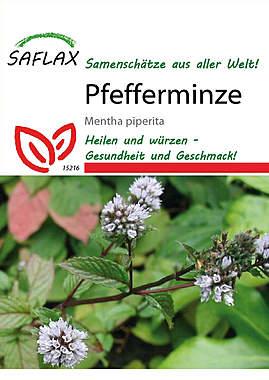 Mein Heilpflanzengarten - Pfefferminze_small