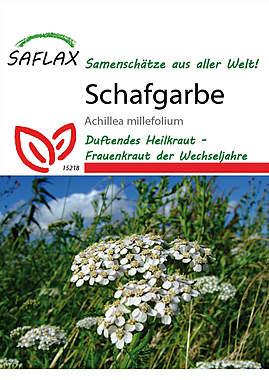 Mein Heilpflanzengarten - Schafgarbe_small