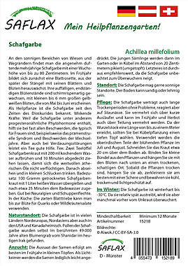 Mein Heilpflanzengarten - Schafgarbe_small01