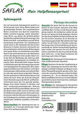 Mein Heilpflanzengarten - Spitzwegerich_small01