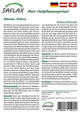 Mein Heilpflanzengarten - Zitronen-Melisse_small01