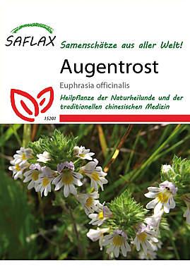 Mein Heilpflanzengarten - Augentrost_small
