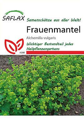 Mein Heilpflanzengarten - Frauenmantel