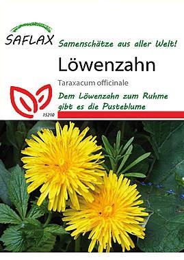 Mein Heilpflanzengarten - Löwenzahn