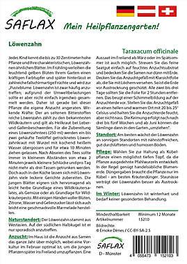 Mein Heilpflanzengarten - Löwenzahn_small01
