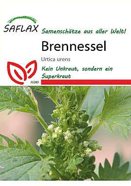Mein Heilpflanzengarten - Brennessel