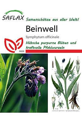 Mein Heilpflanzengarten - Beinwell_small