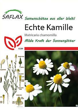 Mein Heilpflanzengarten - Echte Kamille