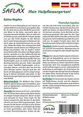 Mein Heilpflanzengarten - Echter Hopfen_small01