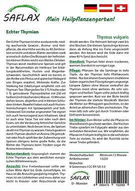 Mein Heilpflanzengarten - Echter Thymian_small01