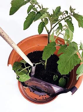 Tomatenanker 2 × 2er-Set_small02