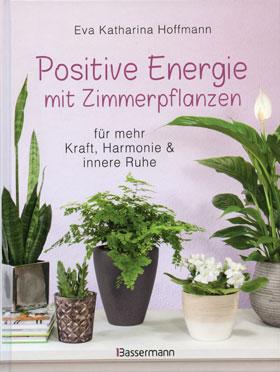 Positive Energie mit Zimmerpflanzen_small