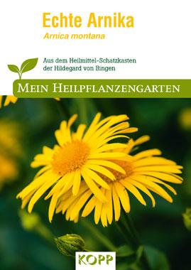 Echte Arnika - Mein Heilpflanzengarten_small