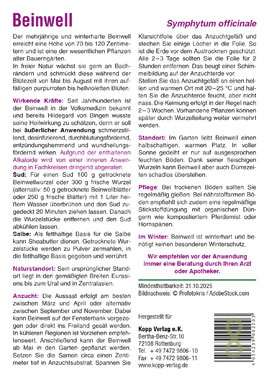 Beinwell - Mein Heilpflanzengarten_small01