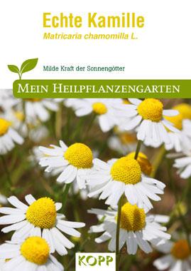 Echte Kamille - Mein Heilpflanzengarten_small