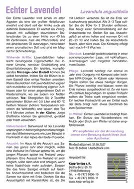 Echter Lavendel - Mein Heilpflanzengarten_small01