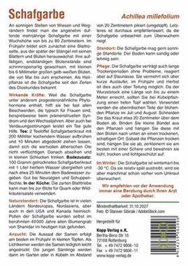 Schafgarbe - Mein Heilpflanzengarten_small01