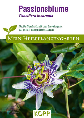 Passionsblume - Mein Heilpflanzengarten_small