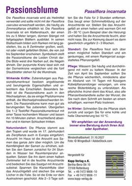 Passionsblume - Mein Heilpflanzengarten_small01