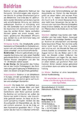 Baldrian - Mein Heilpflanzengarten_small01