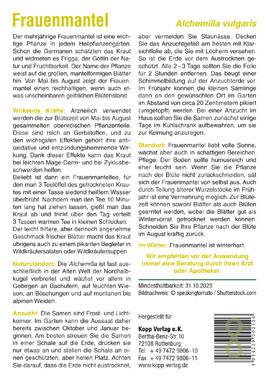 Frauenmantel - Mein Heilpflanzengarten_small01