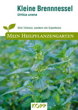 Kleine Brennnessel - Mein Heilpflanzengarten_small