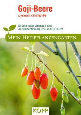 Goji-Beere - Mein Heilpflanzengarten_small