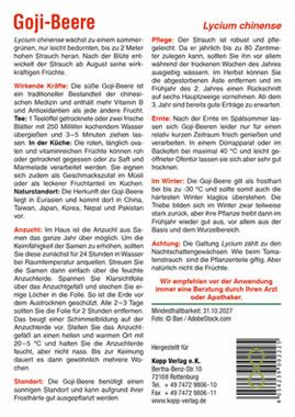 Goji-Beere - Mein Heilpflanzengarten_small01