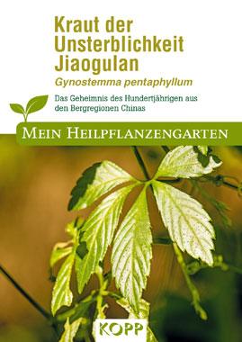 Kraut der Unsterblichkeit Jiaogulan - Mein Heilpflanzengarten_small