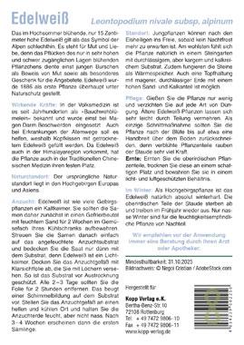Edelweiß - Mein Heilpflanzengarten_small01