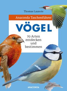 Vögel - 70 Arten entdecken und bestimmen_small