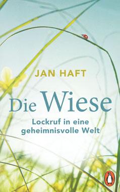Die Wiese_small