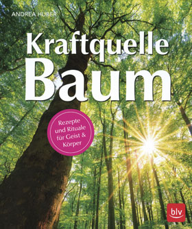 Kraftquelle Baum_small