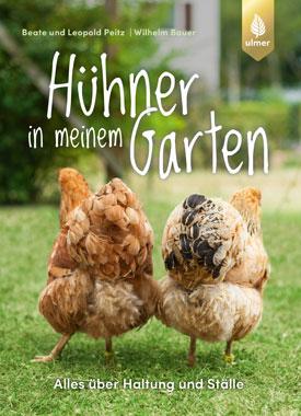 Hühner in meinem Garten_small