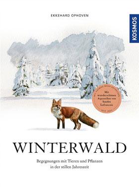 Winterwald_small