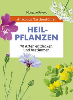Taschenführer Heilpflanzen_small
