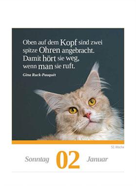 Eine Katze für jeden Tag 2022_small01