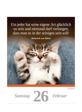 Eine Katze für jeden Tag 2022_small03