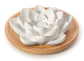 PRIMAVERA® Aroma Duftstein Lotusblüte_small