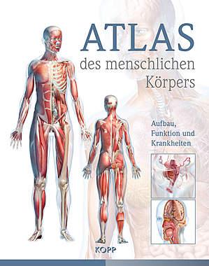 Atlas des menschlichen Körpers_small