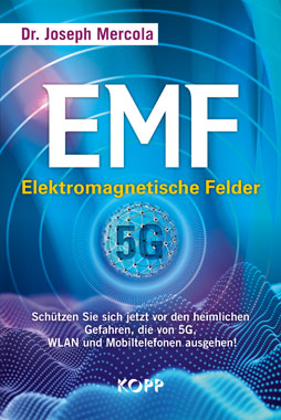 EMF - Elektromagnetische Felder_small