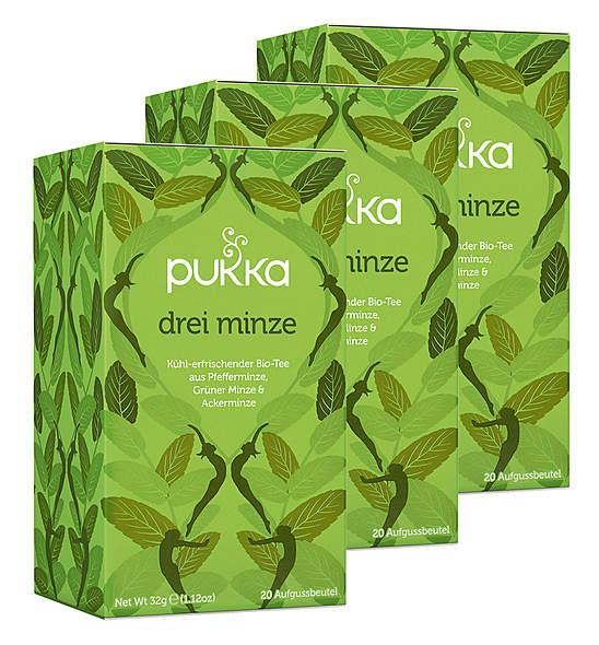 3er-Pack Pukka Drei Minze Tee
